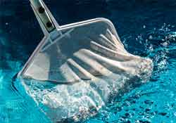Skimming the pool is included with pool cleaning service