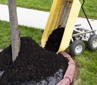 OneNeighbor Mulch Installation Service Includes Delivery