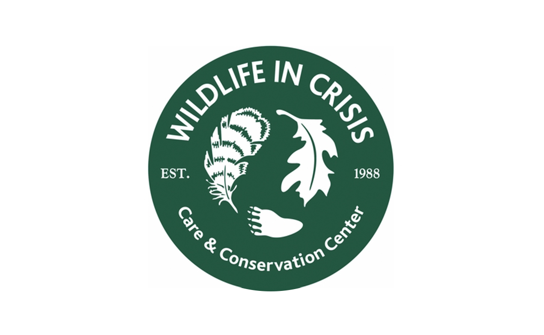 Wildlife in Crisis