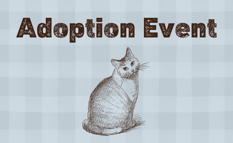 Adoption Event with Bridgeport Cat Rescue