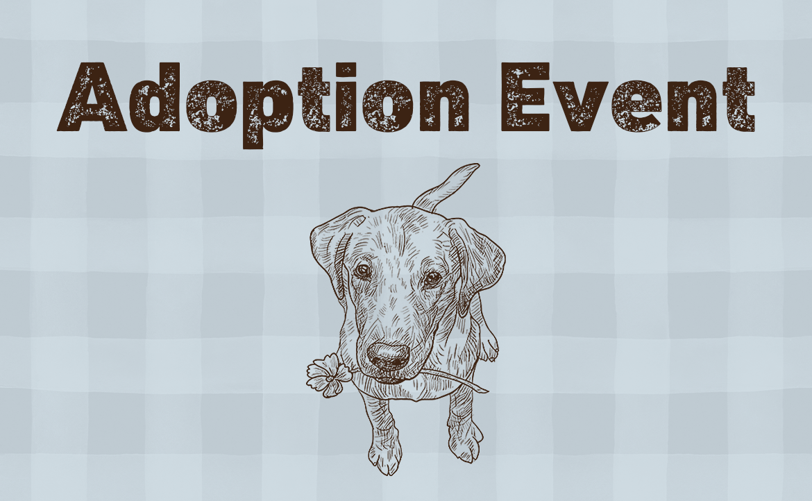 Adoption Event with Red Leash Rescue