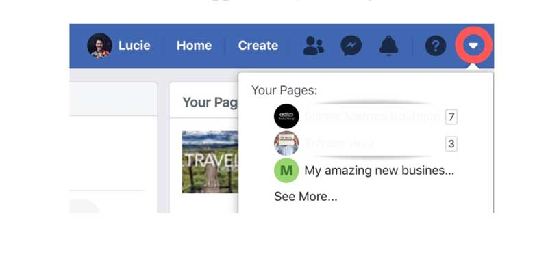 Manage Facebook business Pages
