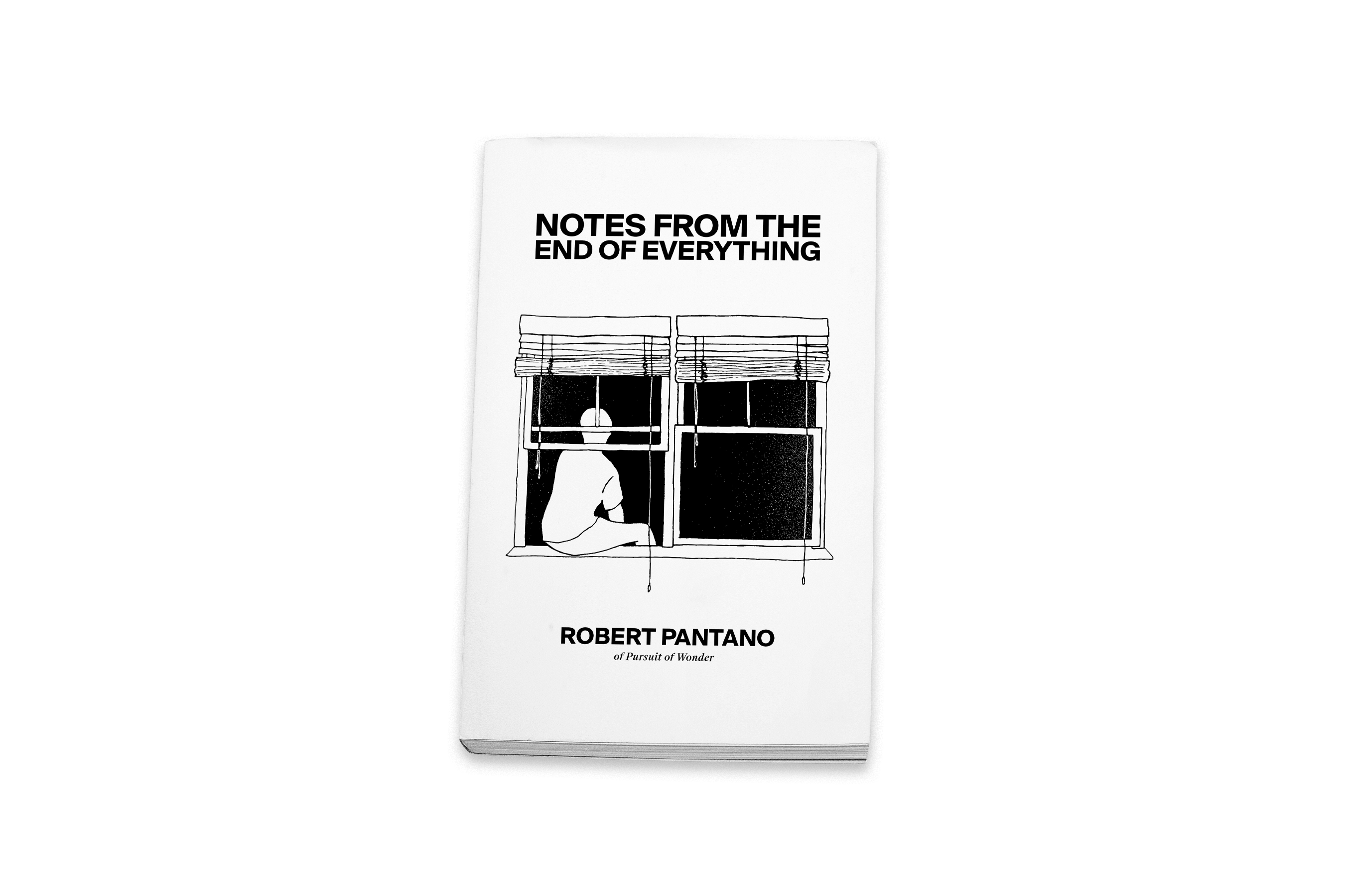 The writer and creator of the YouTube channel and production house Pursuit of Wonder brings you his debut book, Notes from the End of Everything.