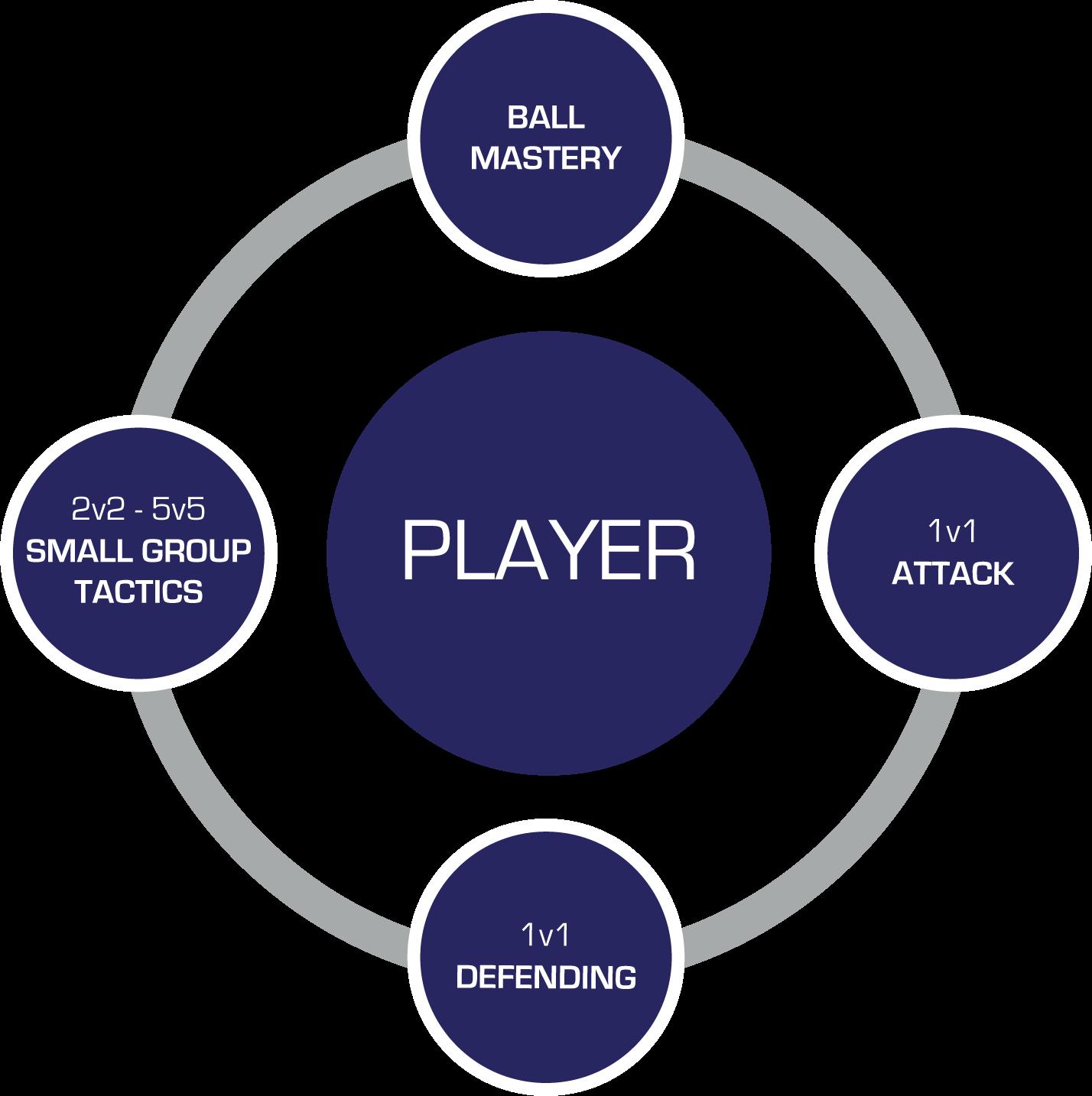 RecPlus Player Phases Diagram