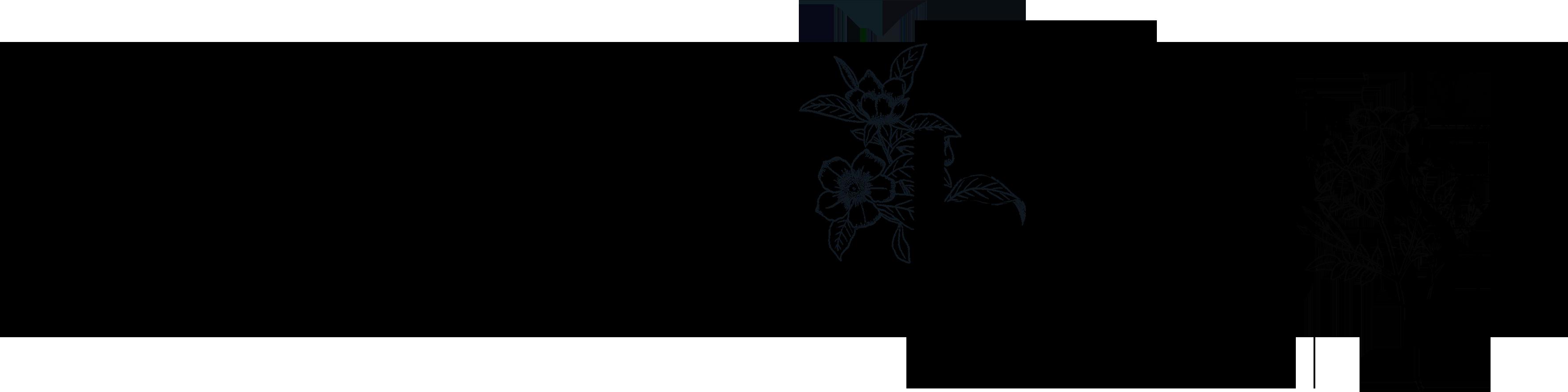 Blooming Haus Logo