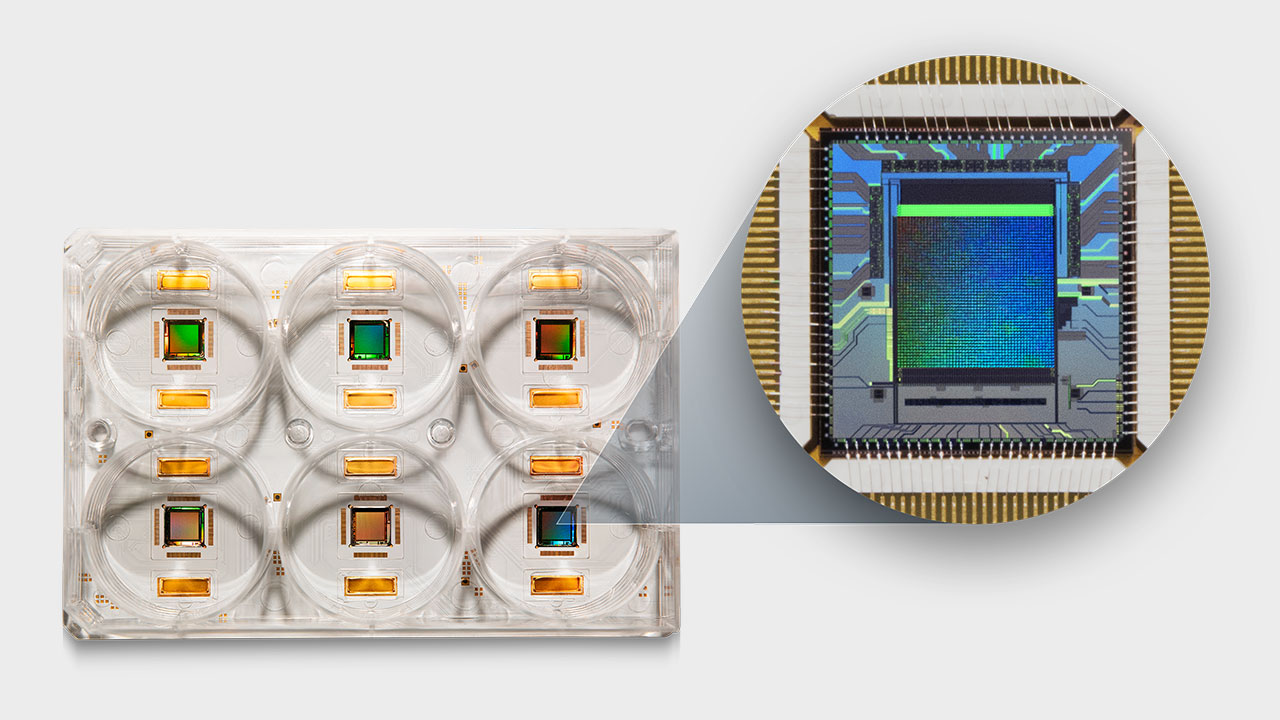 3Brain's CorePlate™ Tech - the next generation of high density microelectrode array