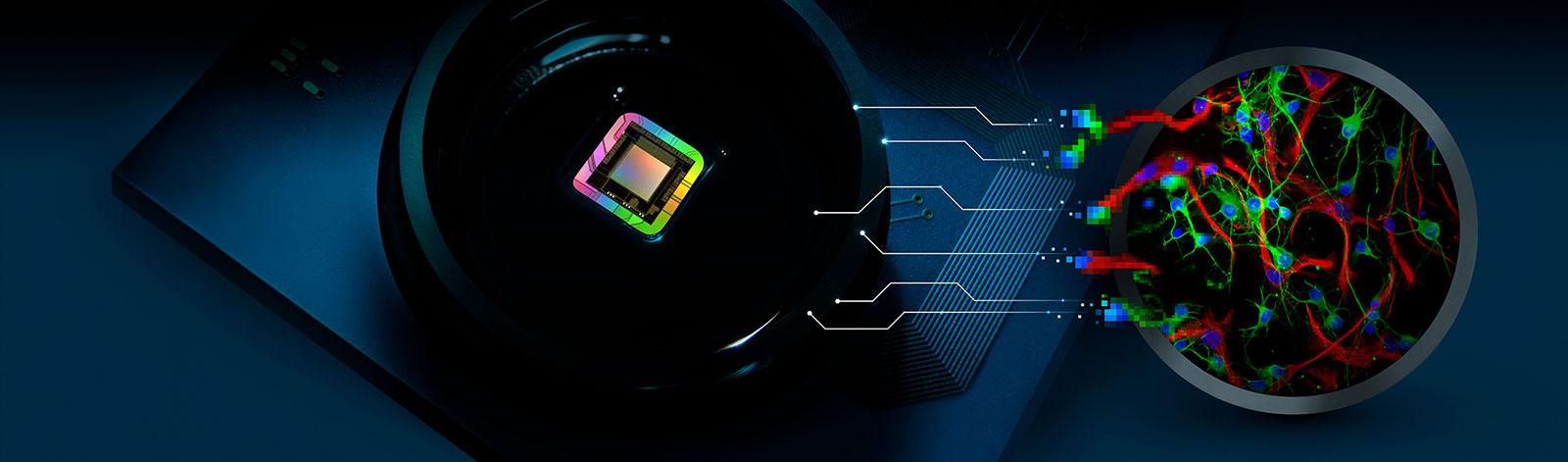 3Brain's CorePlate™ technology