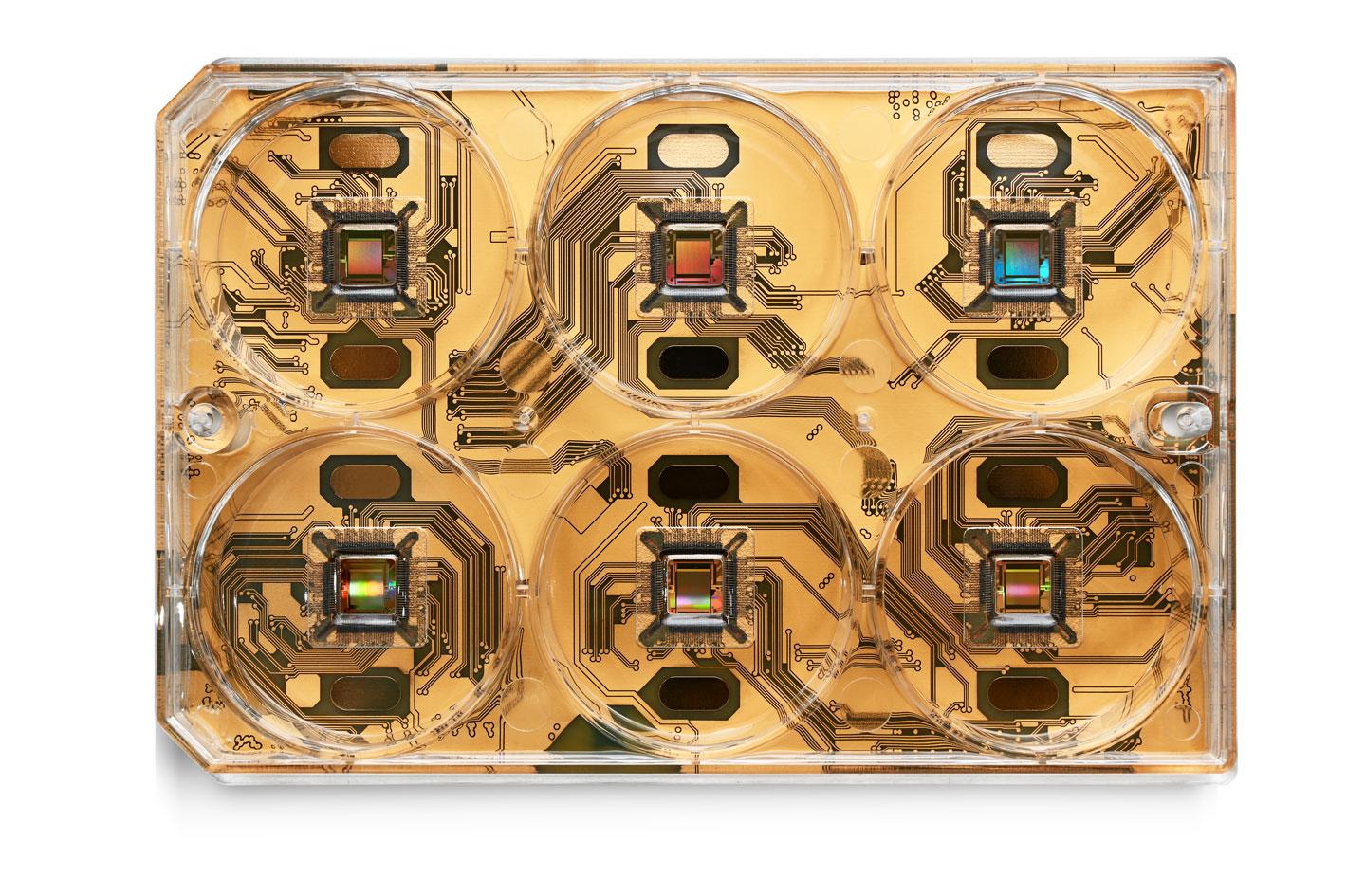 CorePlate™ Multiwells - 3Brain