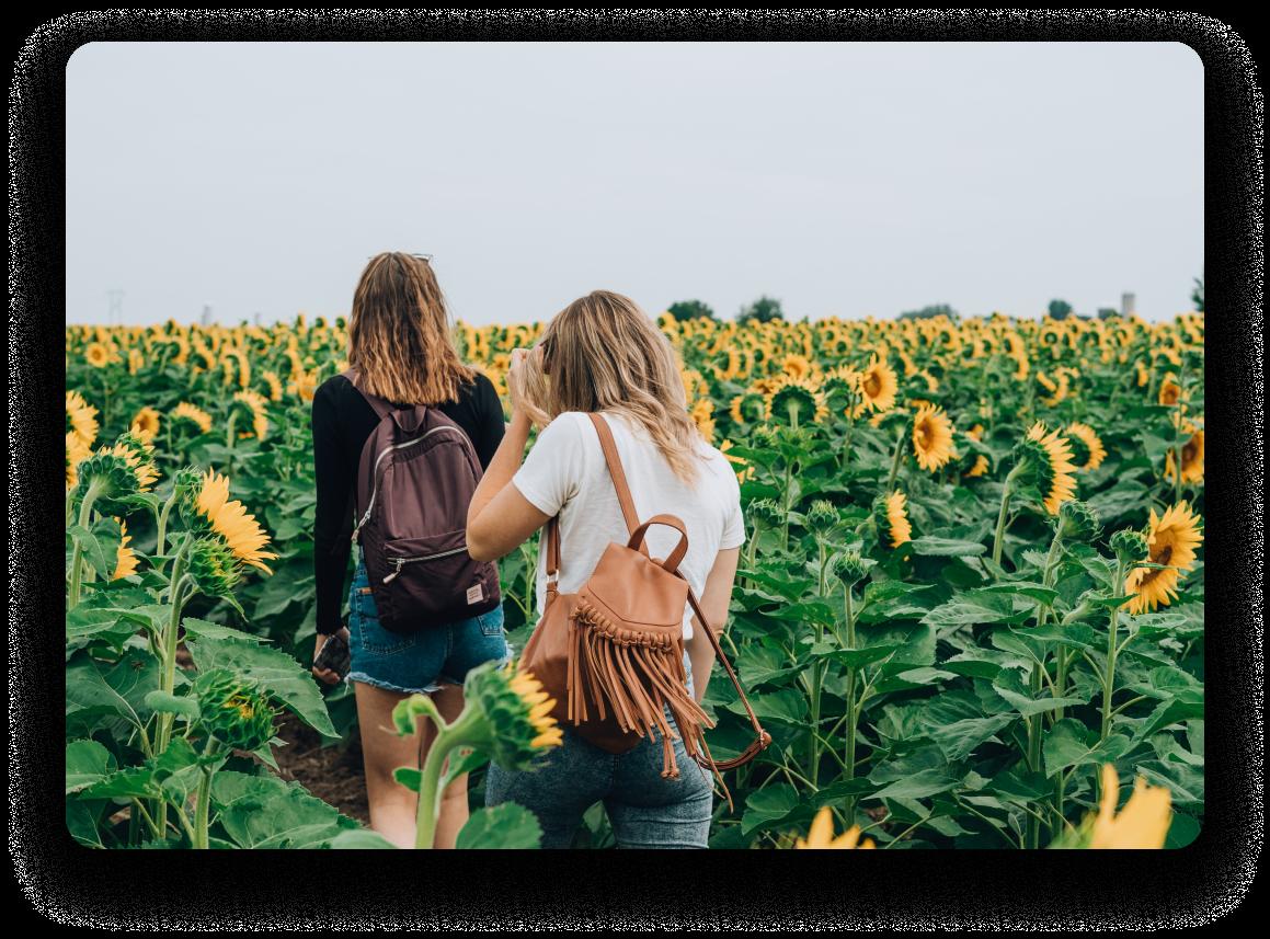 Two women walking through a sunflower field