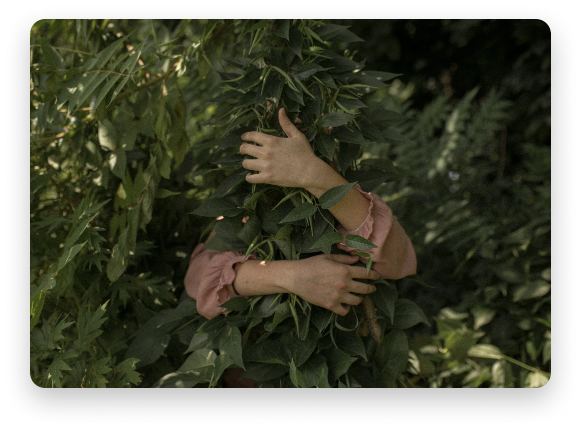 A person wearing a pink top hugging green leaves - all you can see are the person's hands and surrounding the leaves, standing amongst other leaves.
