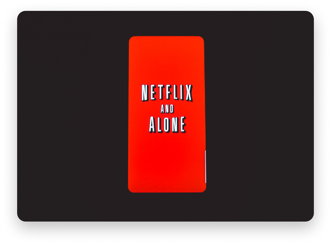 "Netflix logo stating ""Netflix and Alone"""
