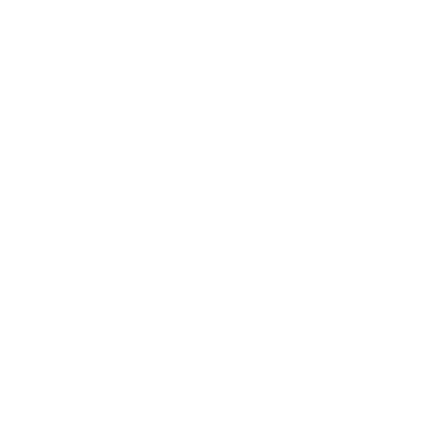 Supporting and Empowering Civil Society