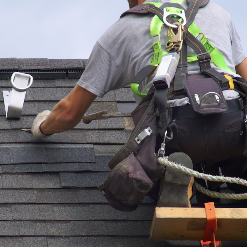 Professional Roof Contractor