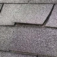 Wind Damage Shingle