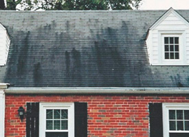 Bleached Shingles