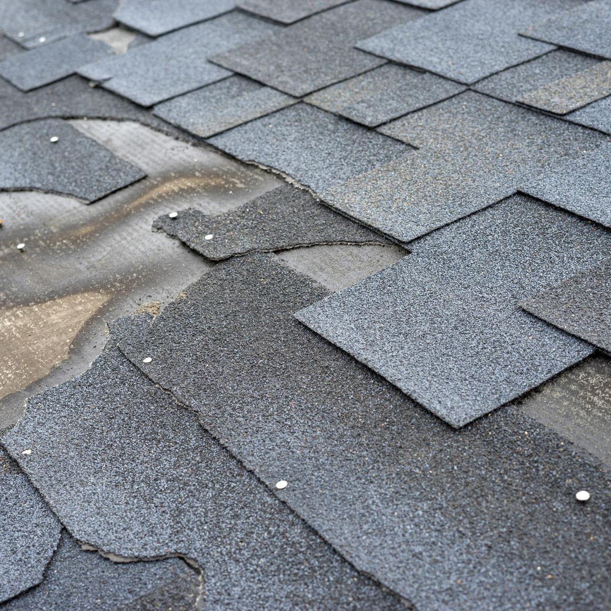 shingles damage