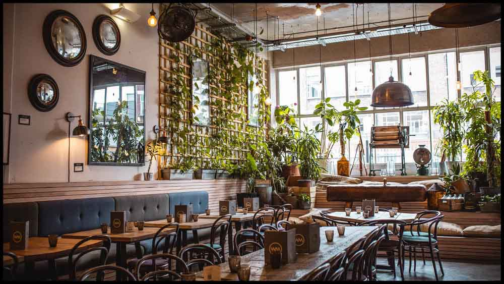 Interior of restaurant and coffee shop Wringer and Mangle, with wooden tables and plants around the space, in East London