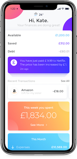 A mockup on a mobile phone of Emma, an app that aggregates your bank accounts and credit cards to give you a full picture of your finances