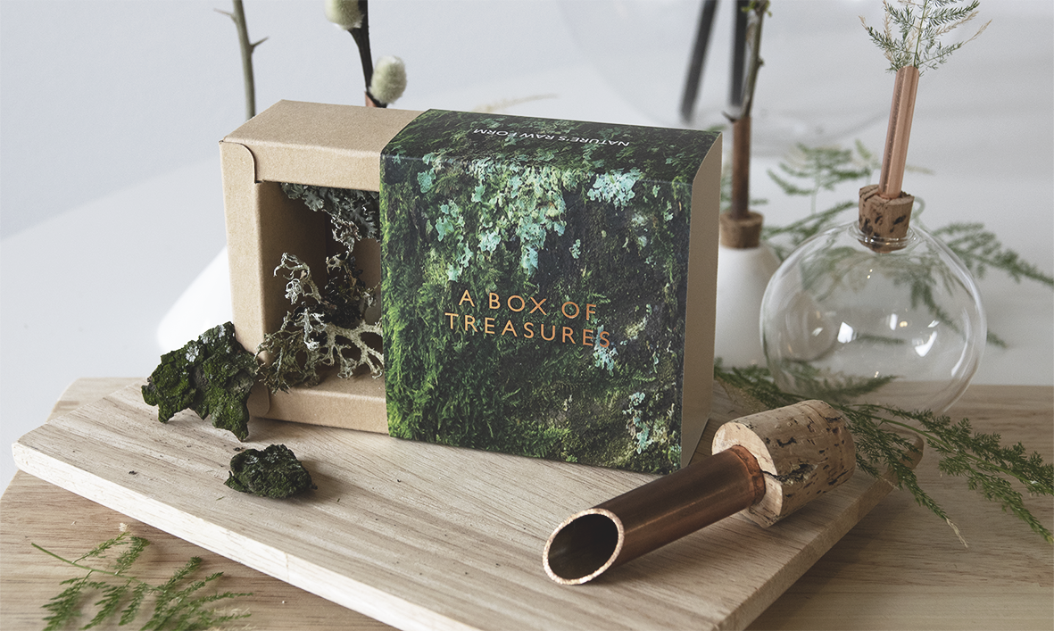 Scandinavia Form Box of treasures packaging in earthly green