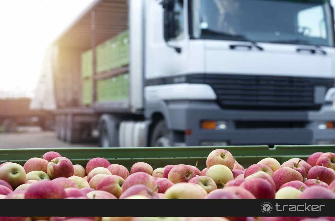 transporte-de-alimentos