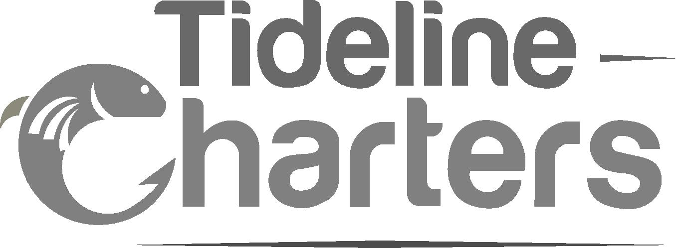 website design client tideline charters