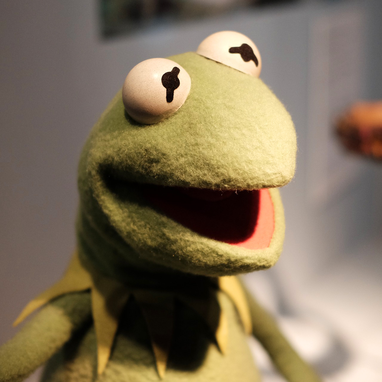 Photo of Kermit the frog.