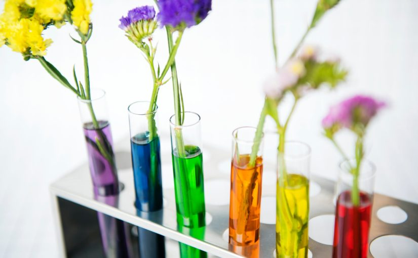 Colouring flowers using coloured water