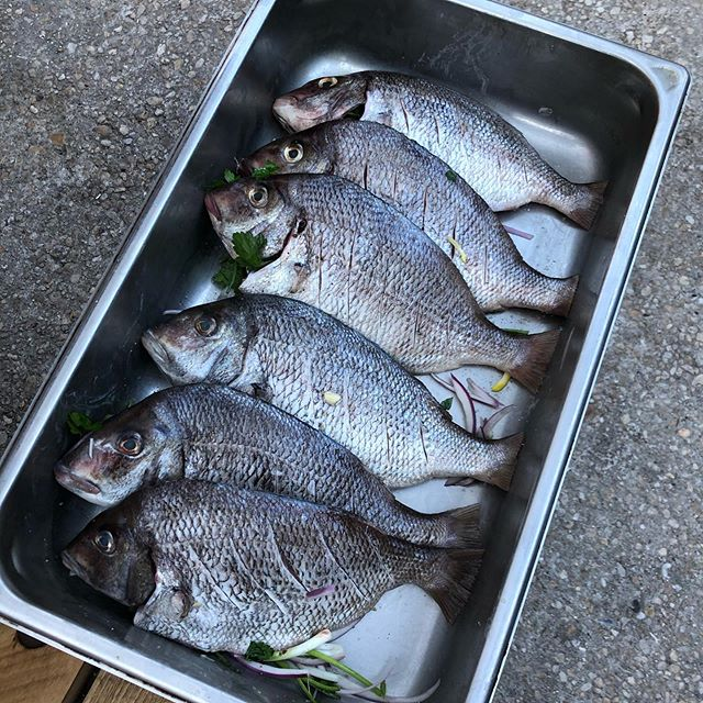 Tonight, whole fish on the fire… And other surprises