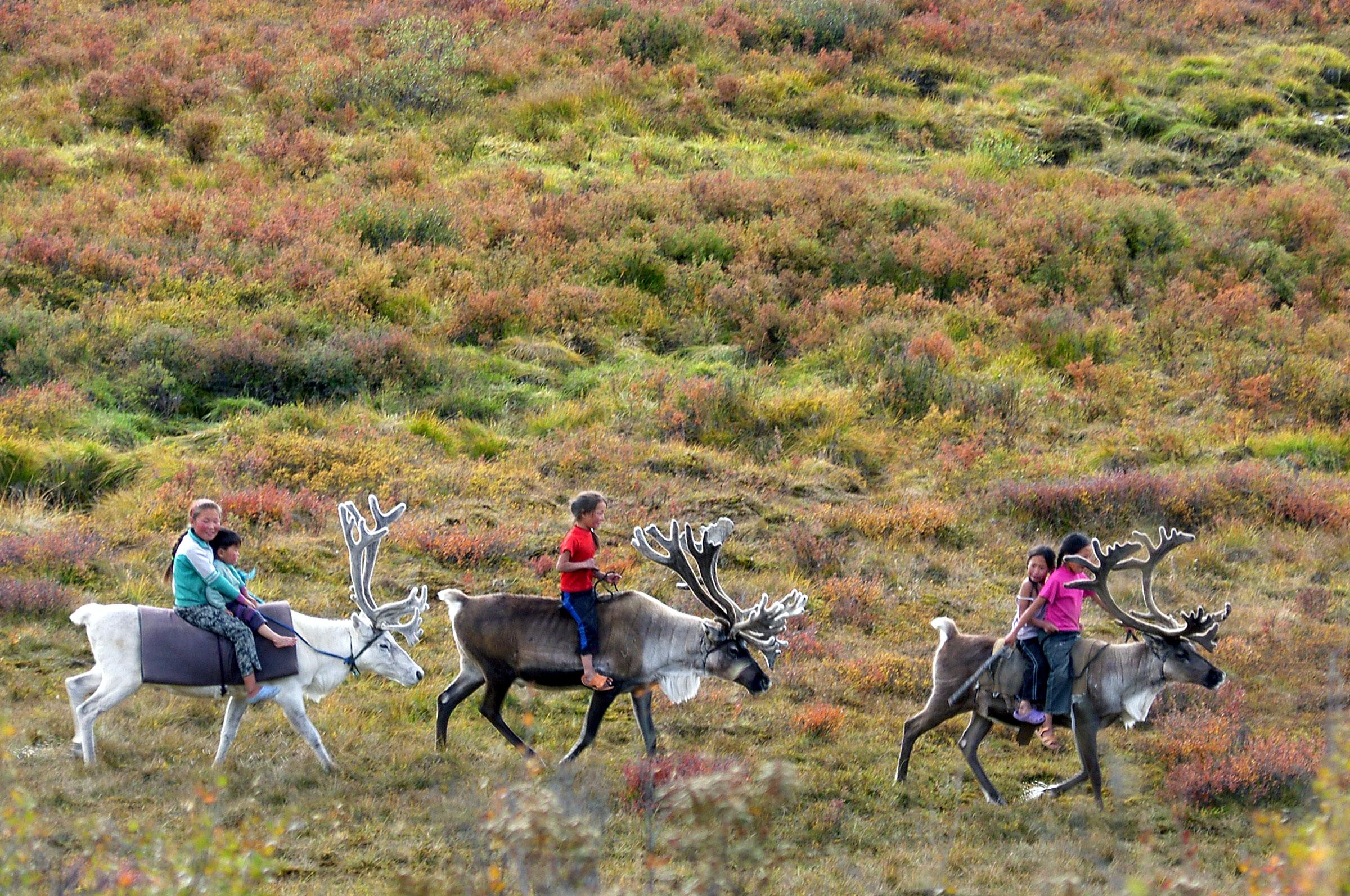 Kids riding their reindeer at the East Taiga Dukha camp. Photo Dan Bailey.