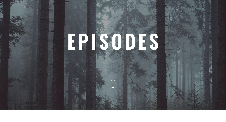 Série CSU / Agent Kovacs – Épisodes