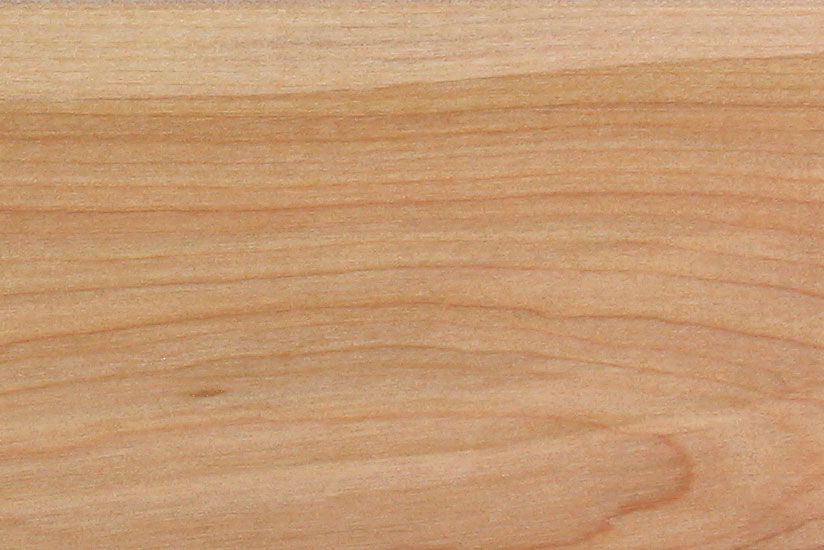 yellow birch wood texture