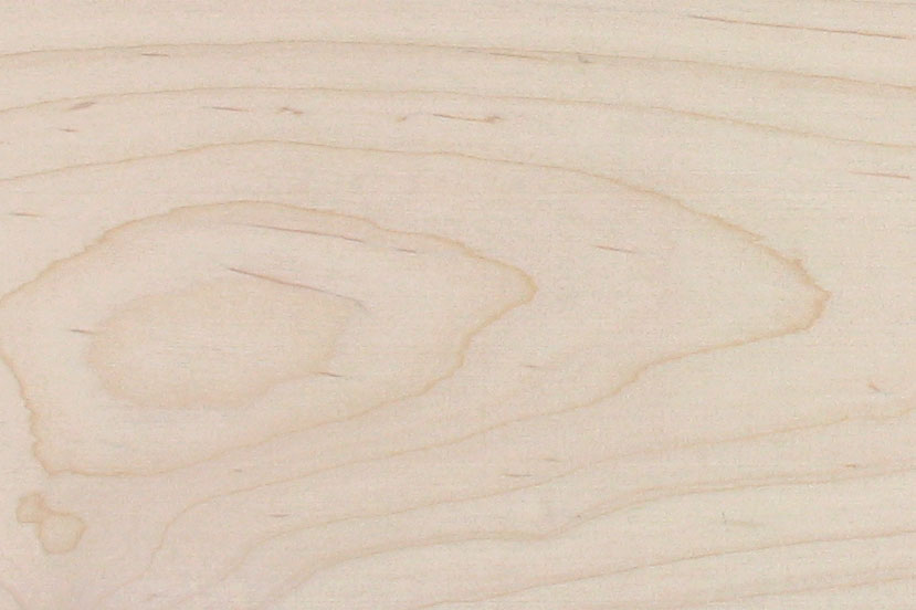 soft maple wood texture