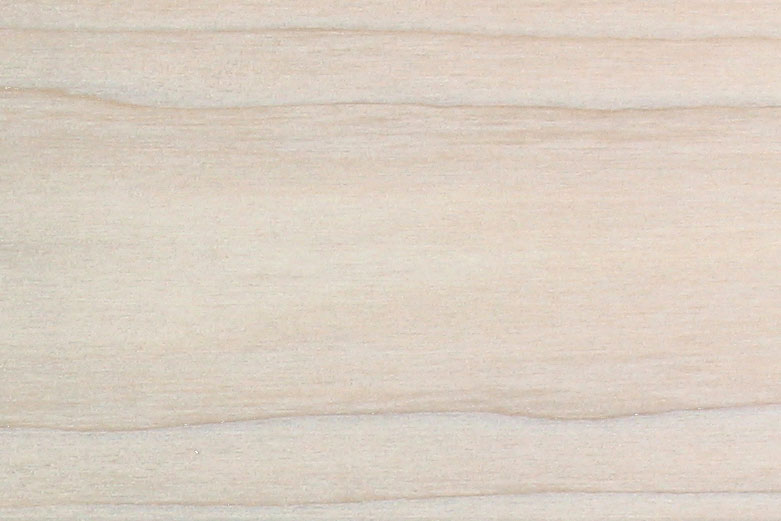 near-white poplar wood texture