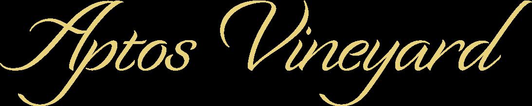 Aptos Vineyard's 2018 Pinot Noir wine bottle, named Opening Remarks