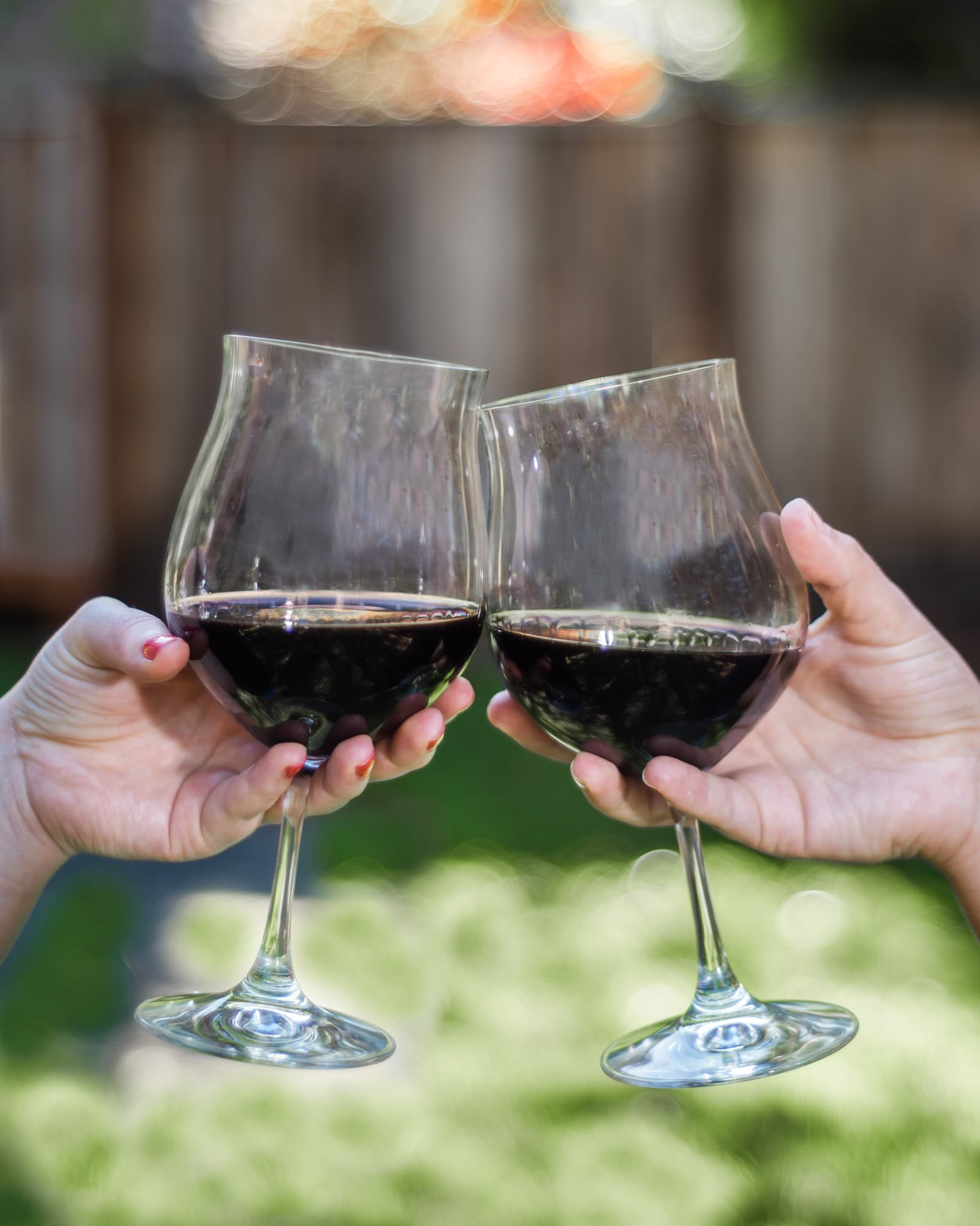 Two wine glasses with pinot noir being cheers-ed together