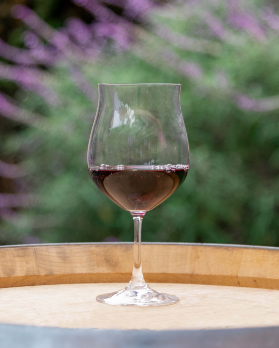 A glass of Aptos Vineyard Pinot Noir red wine placed on top of a wine barrel