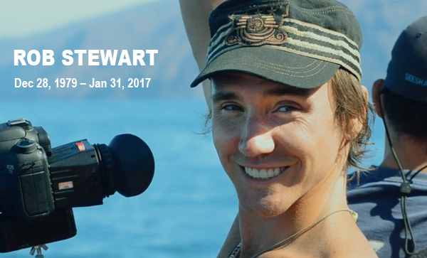 In Memory of Rob Stewart