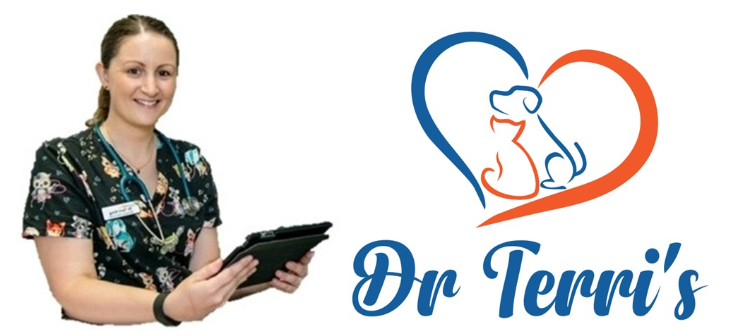 Dr Terri's Home Vet Visits