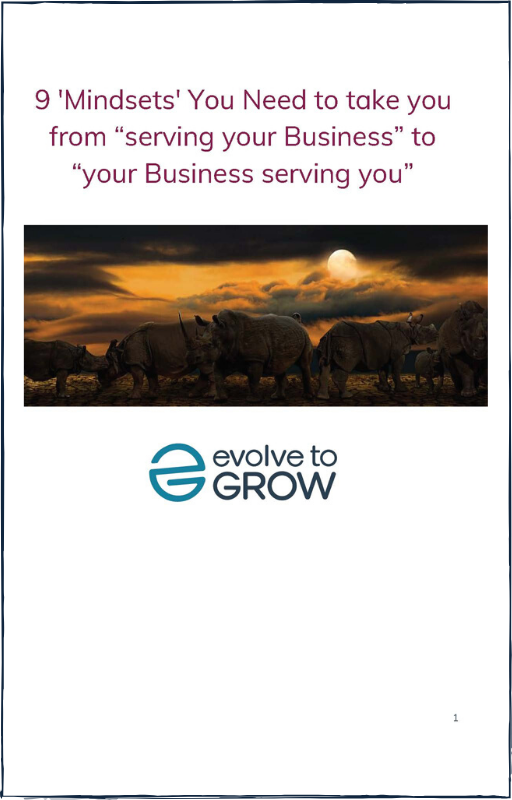 Nine Mindsets You need to Switch From Employee To Business Owner ebook