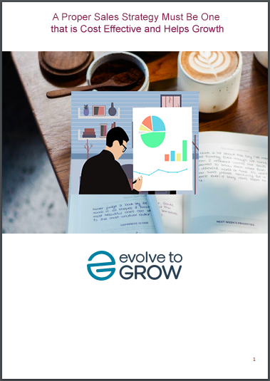A Proper Sales Strategy Must Be One that is Cost Effective and Helps Growth ebook
