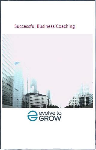 Successful Business Coaching ebook