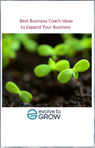 Best Business Coach Ideas to Expand Your Business ebook