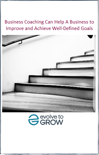 Business Coaching Can Help A Business to Improve and Achieve Well-Defined Goals ebook