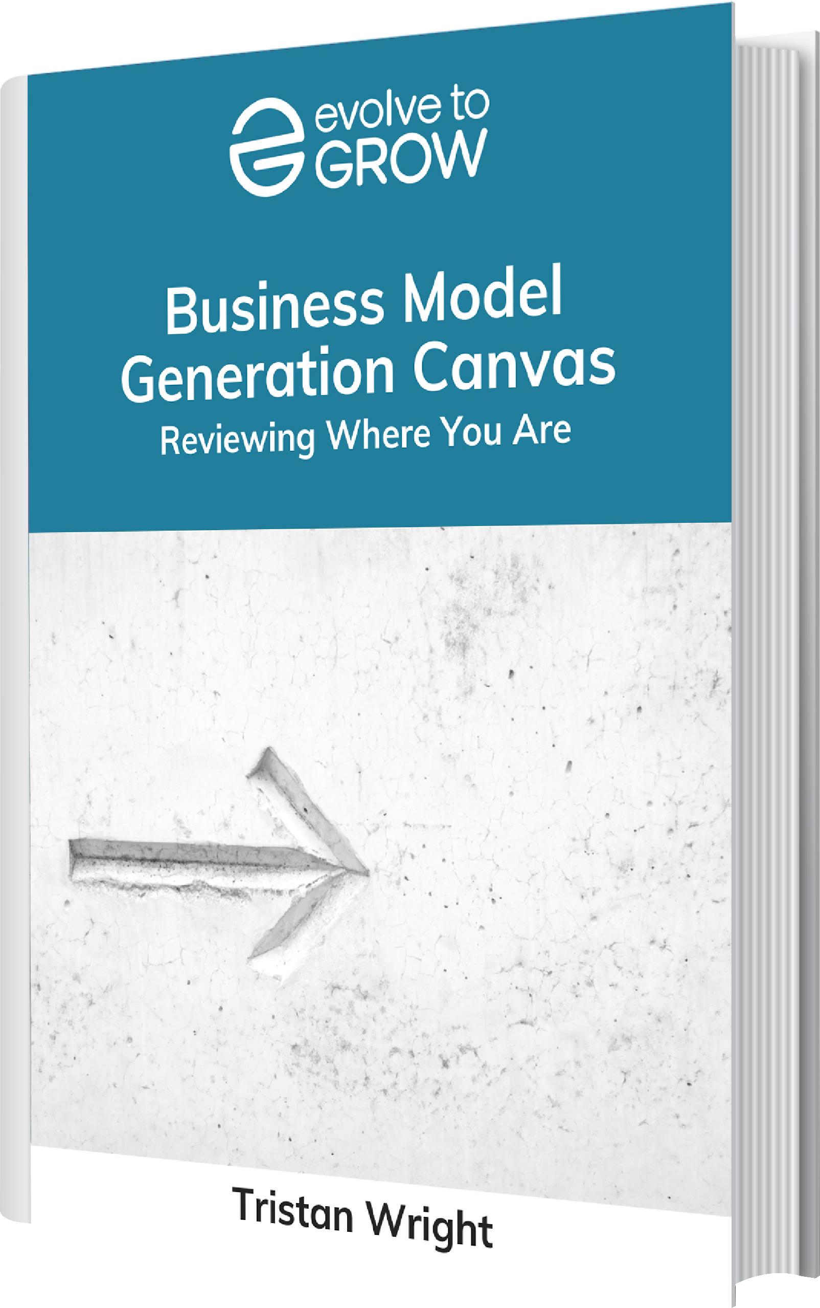 business model generation canvas ebook
