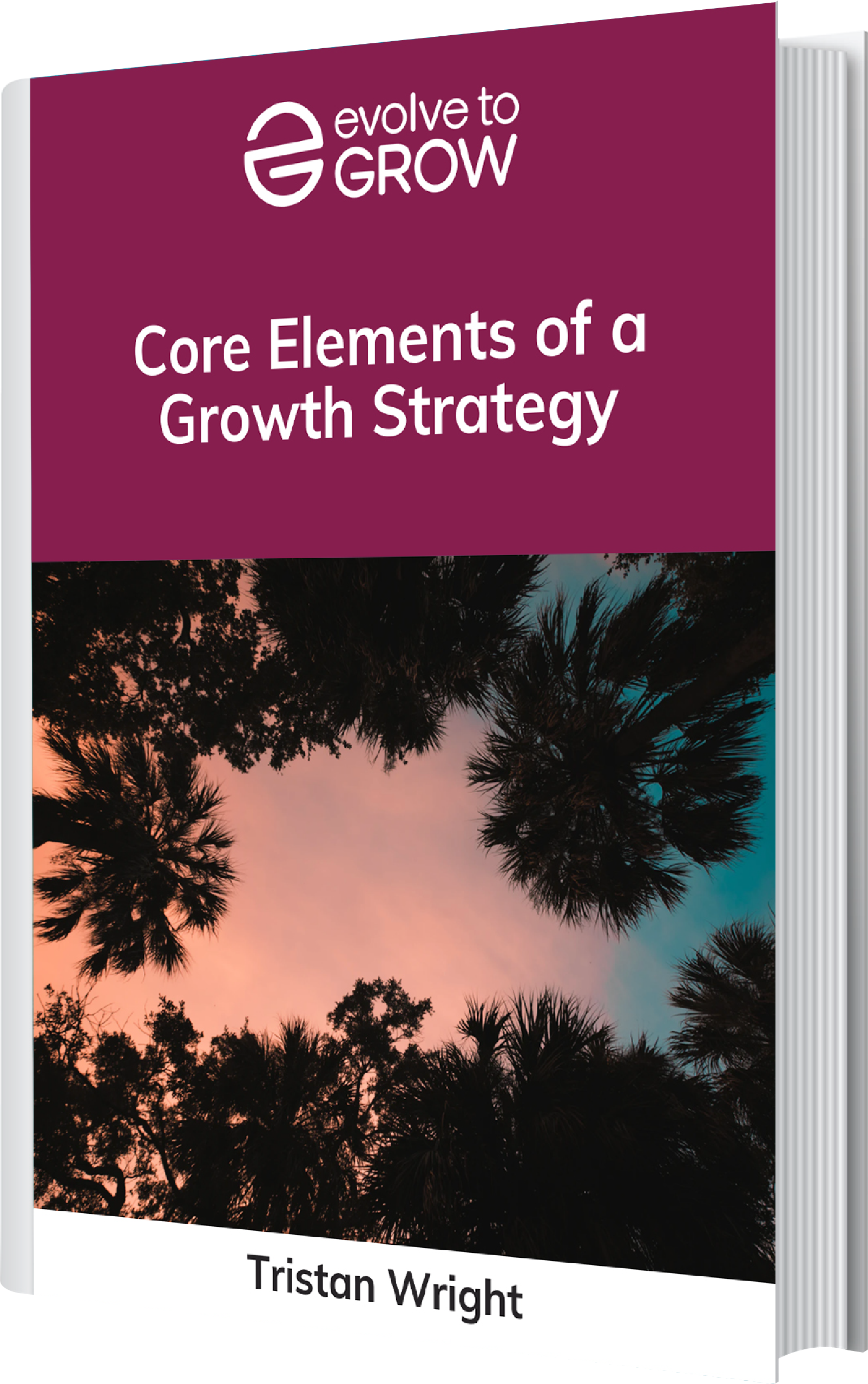 Core elements of a core strategy ebook