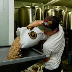 Brew master pouring hops as part of beer distillery process.