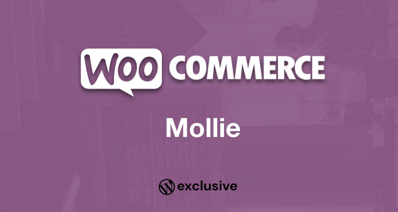 WooCommerce Mollie Payment Gateway