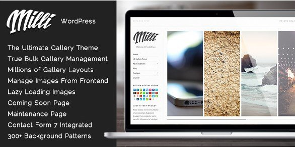 Milli – The Ultimate Photo Gallery WordPress Theme