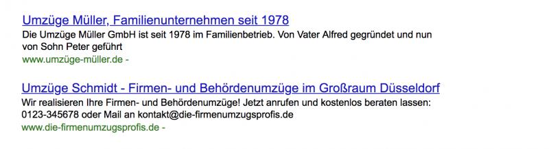 Google Ergebnisse für zwei Umzugsunternehmen