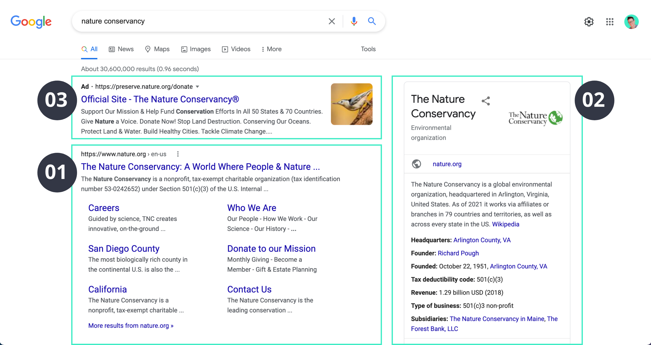 google search engine result page example